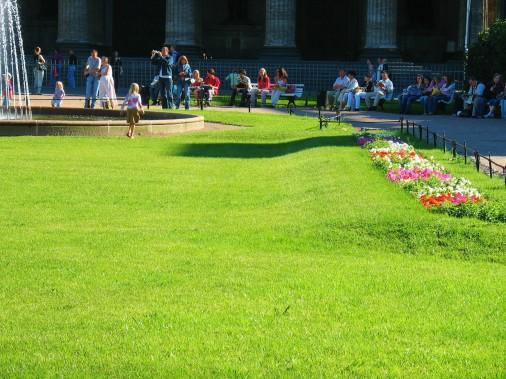 Городской рулонный газон Фото